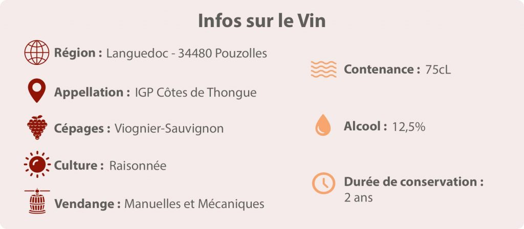 Vin Poisson Fromage